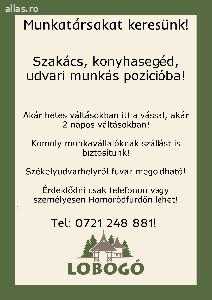 Szakacs 450 1 T